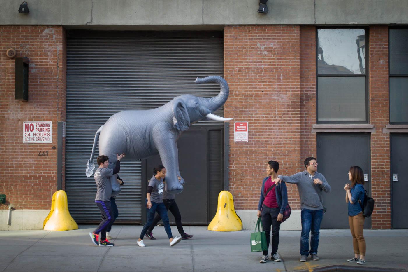 NYC Scene