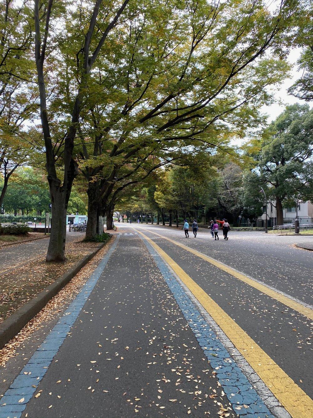 Komawaza Olympic Park