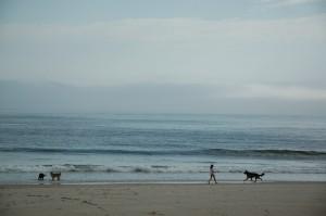 beach1.jpeg