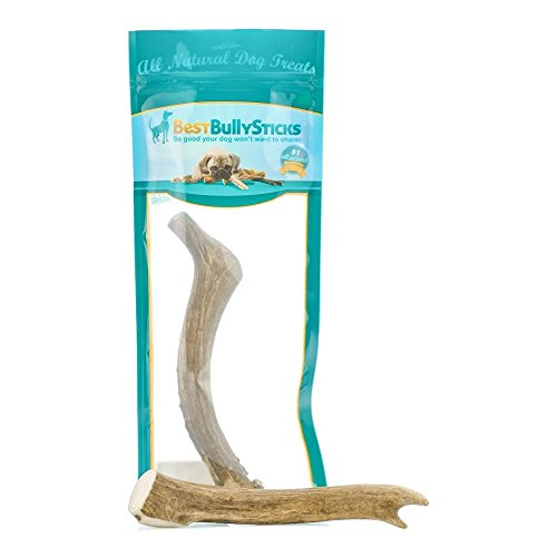 Grade-A Elk and Deer Antler Dog Chews by Best Bully Sticks (1 Pack) Sourced in the USA