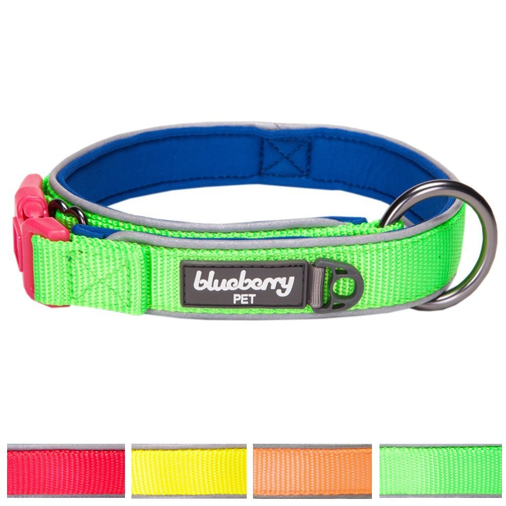 Blueberry Pet Soft & Comfortable Summer Hope 3M Reflective Neoprene Padded Dog Collar, 4 Colors, Matching Harness Available Separately