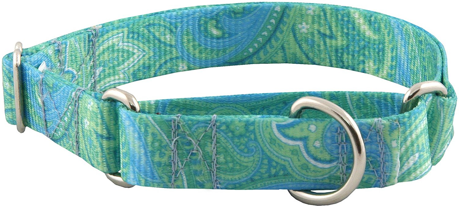Country Brook DesignMartingale Dog Collar - Paisley Collection