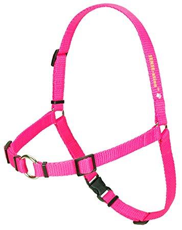 SENSE-ation No-Pull Dog Harness