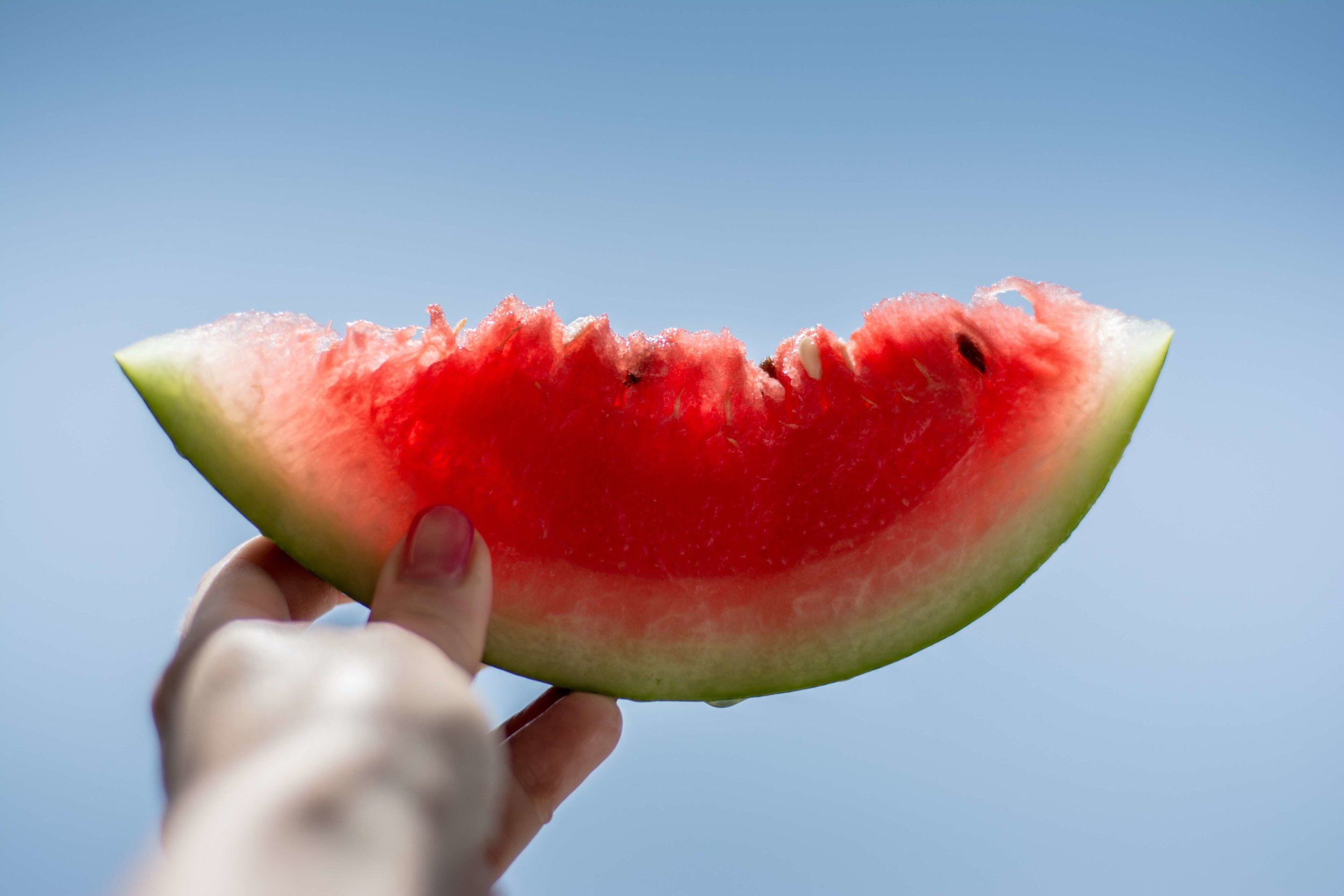 Watermelon (C).jpg