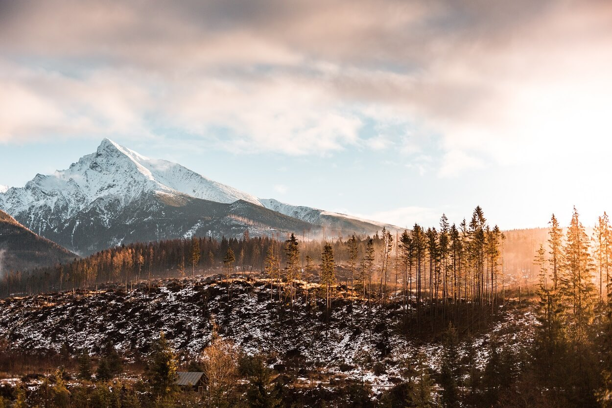 krivan-mountain-slovakia-picjumbo-com (C) (1).jpg