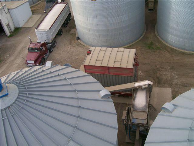 harvest 2008 004.jpg