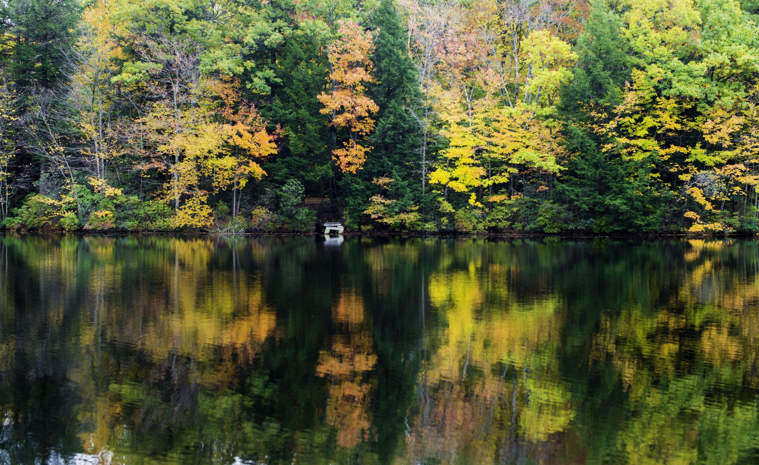 Dunn State Park, Gardener MA