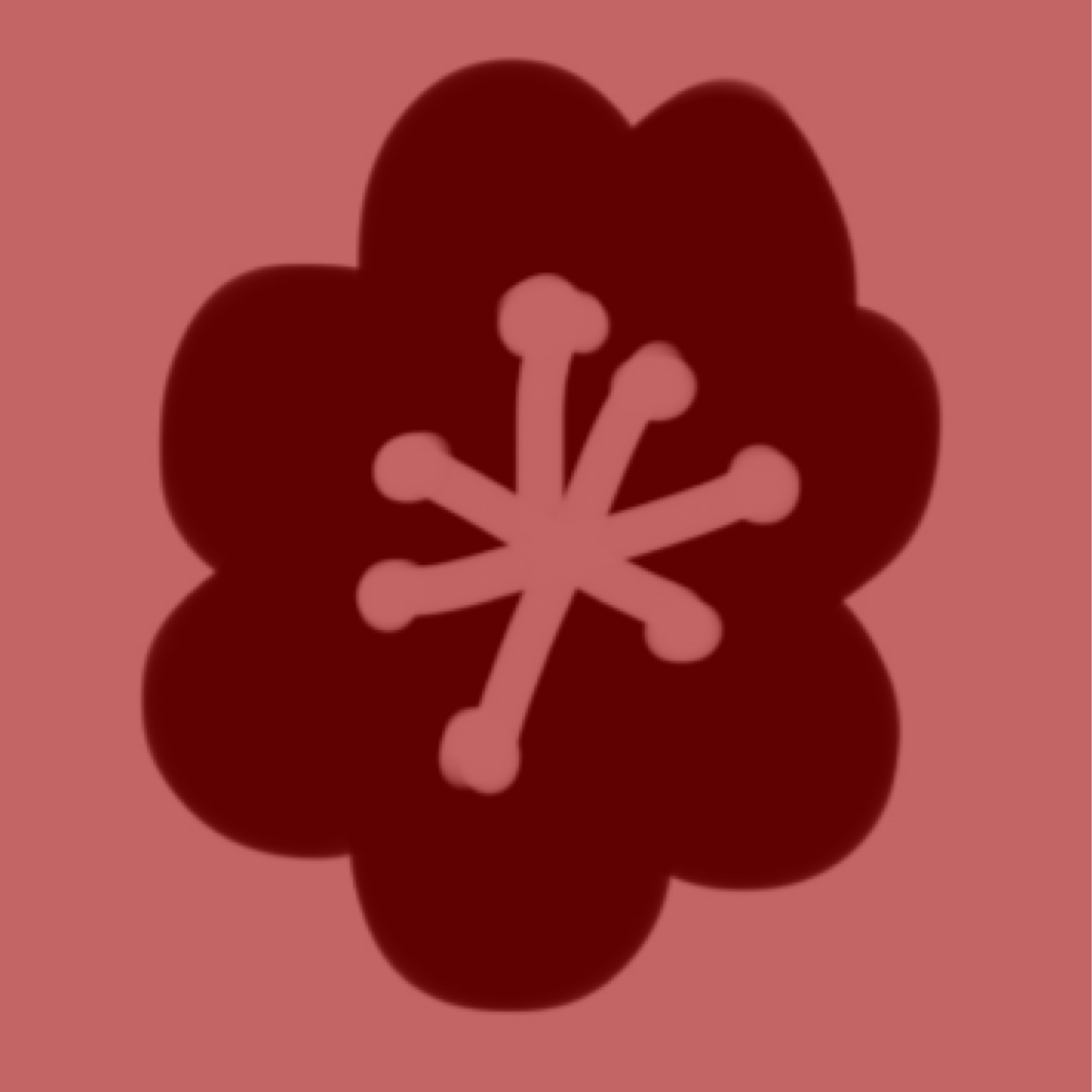 Red Opium Poppy, for Impetus!