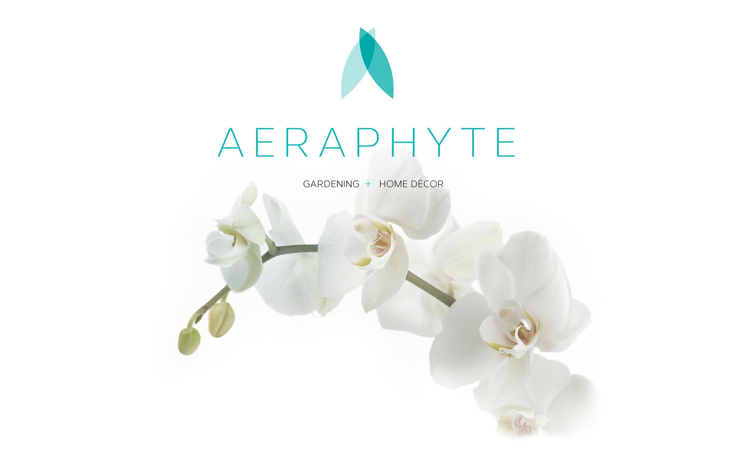 Aeraphyte-portfolio.jpg