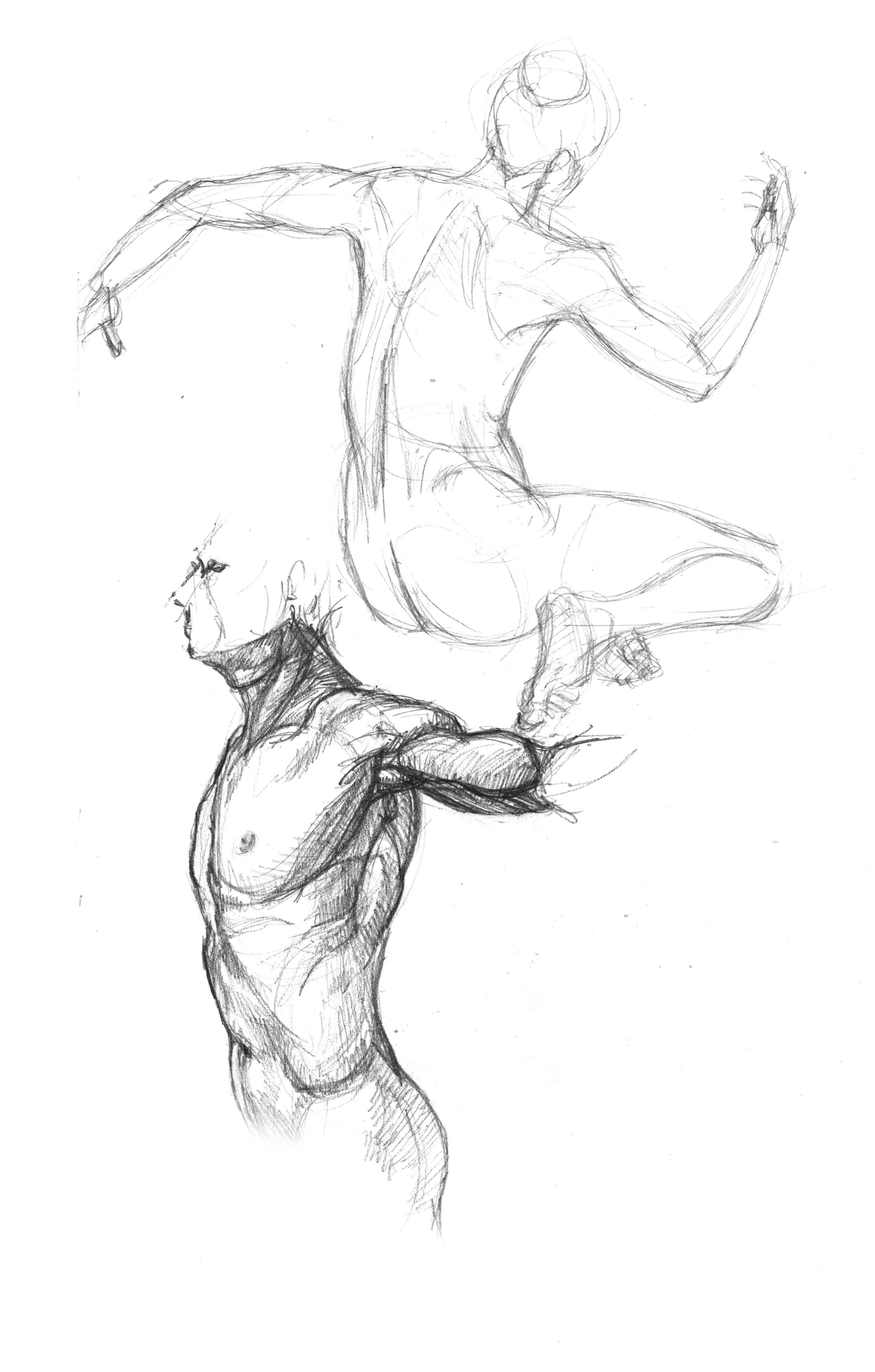 anatomy-studies-005.jpg