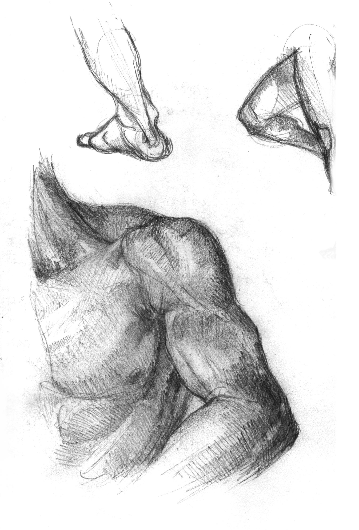 anatomy-studies-012.jpg