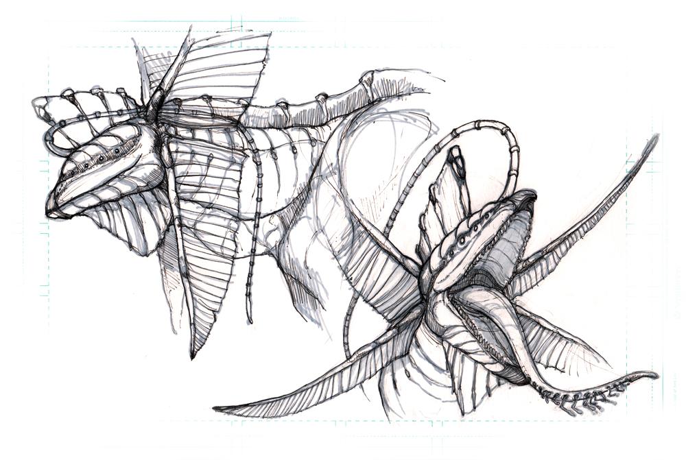 inked-creature1-heads.jpg