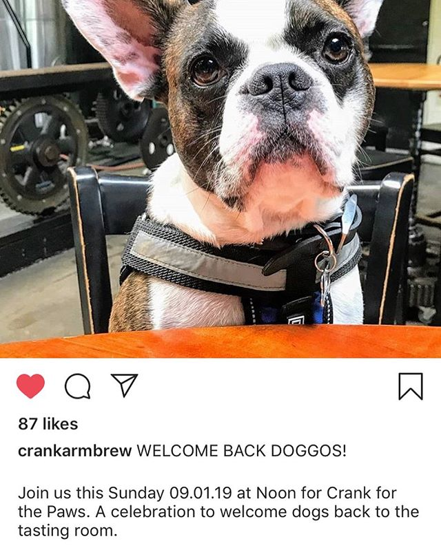 We're doggone excited about #NCTA allowing dogs back in breweries. If you are in Raleigh take your pooch to see these lovely cranks! @crankarmbrew #ThisDogsForYou