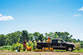 loading-the-farm-truck-in-summer-750_blockitemsmall.jpg