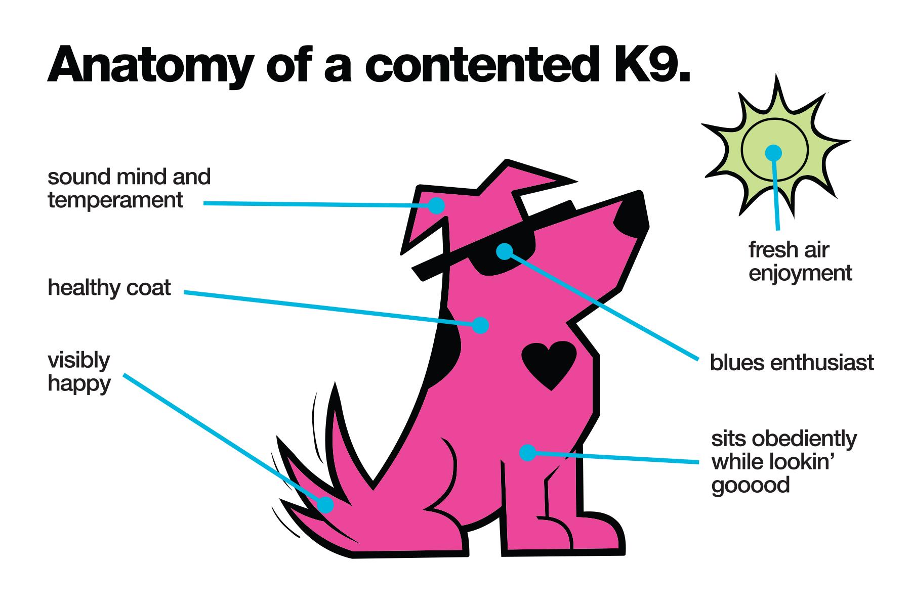 Anatomy_contented_k9_title.jpg