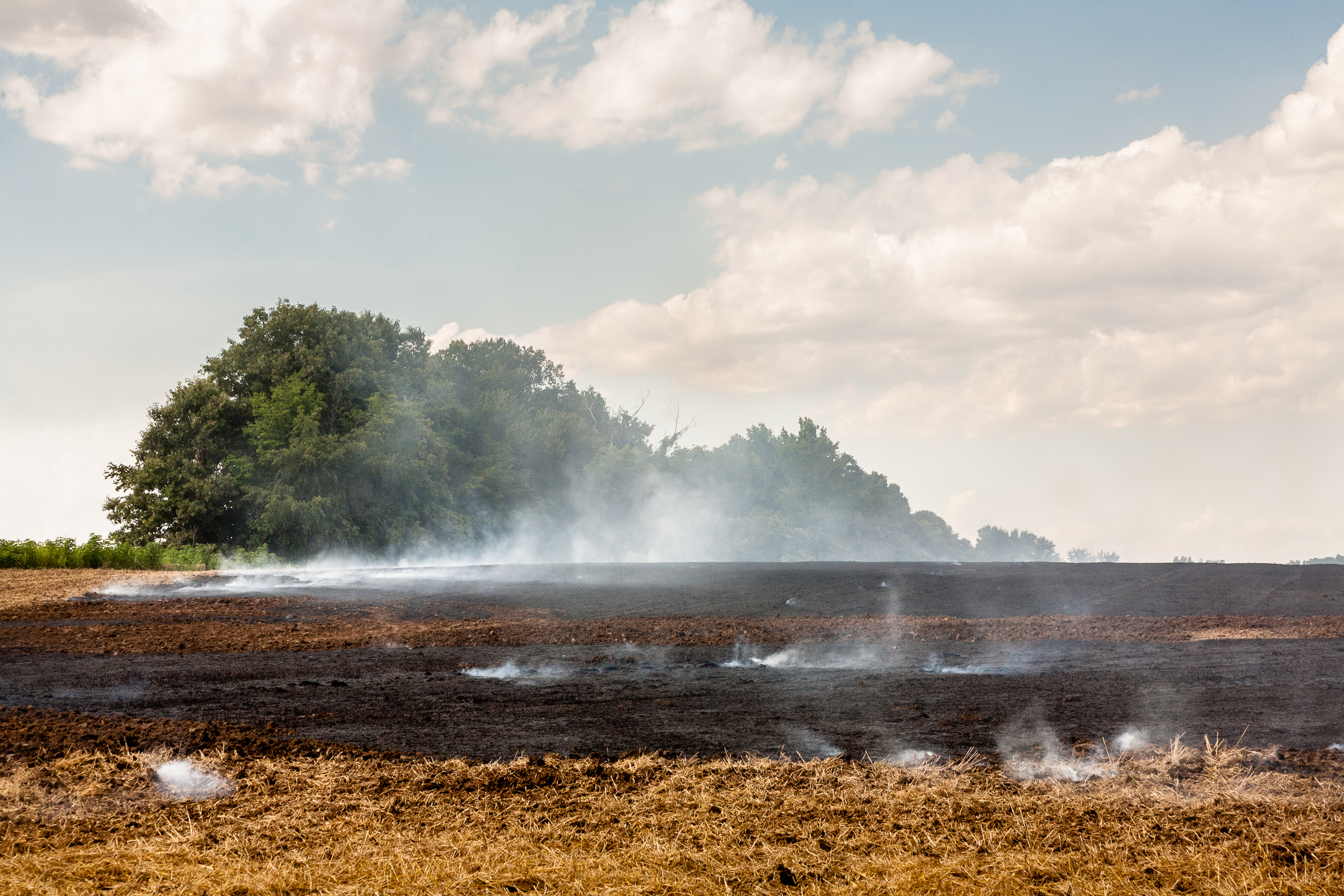 Controlled agricultural field burn, northwest Tennessee.