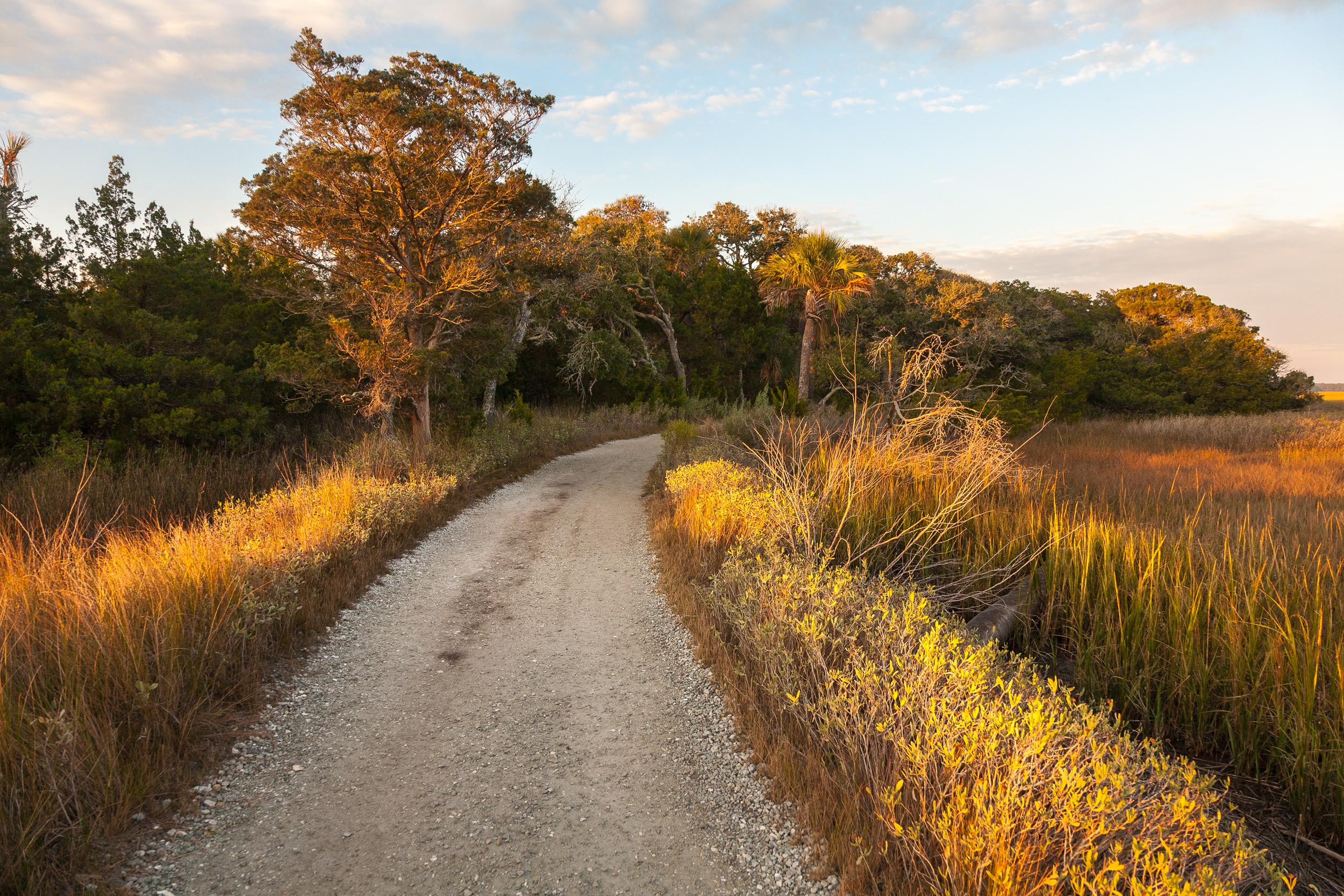 Access road to Edisto Island beach, South Carolina.
