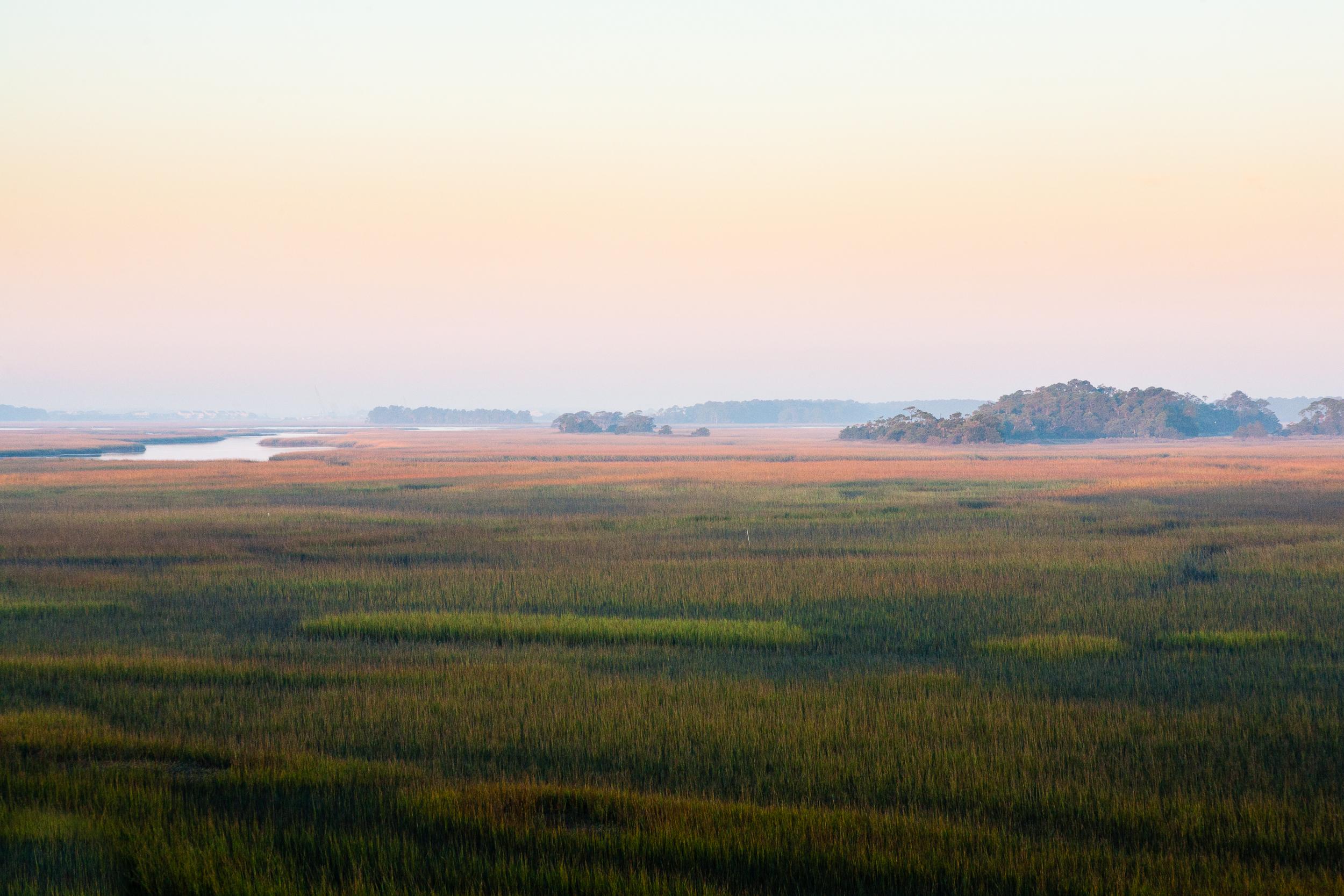 Wetlands, Folly Island, South Carolina.