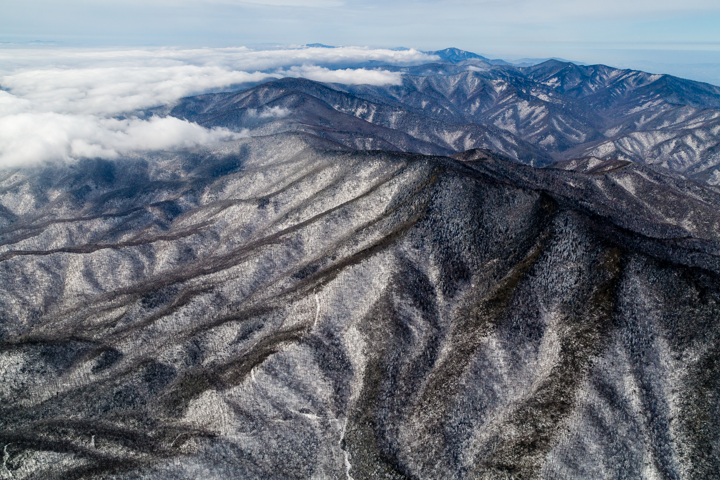 Winter, Great Smoky Mountains.