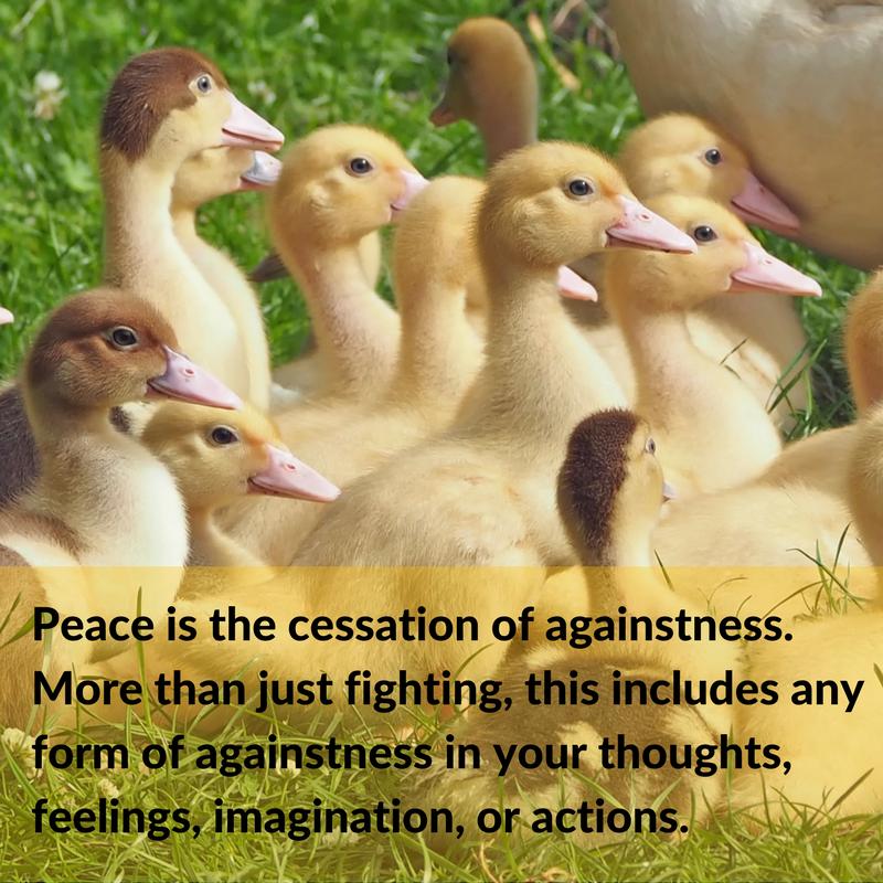 Canva-FB-peace cessation.png