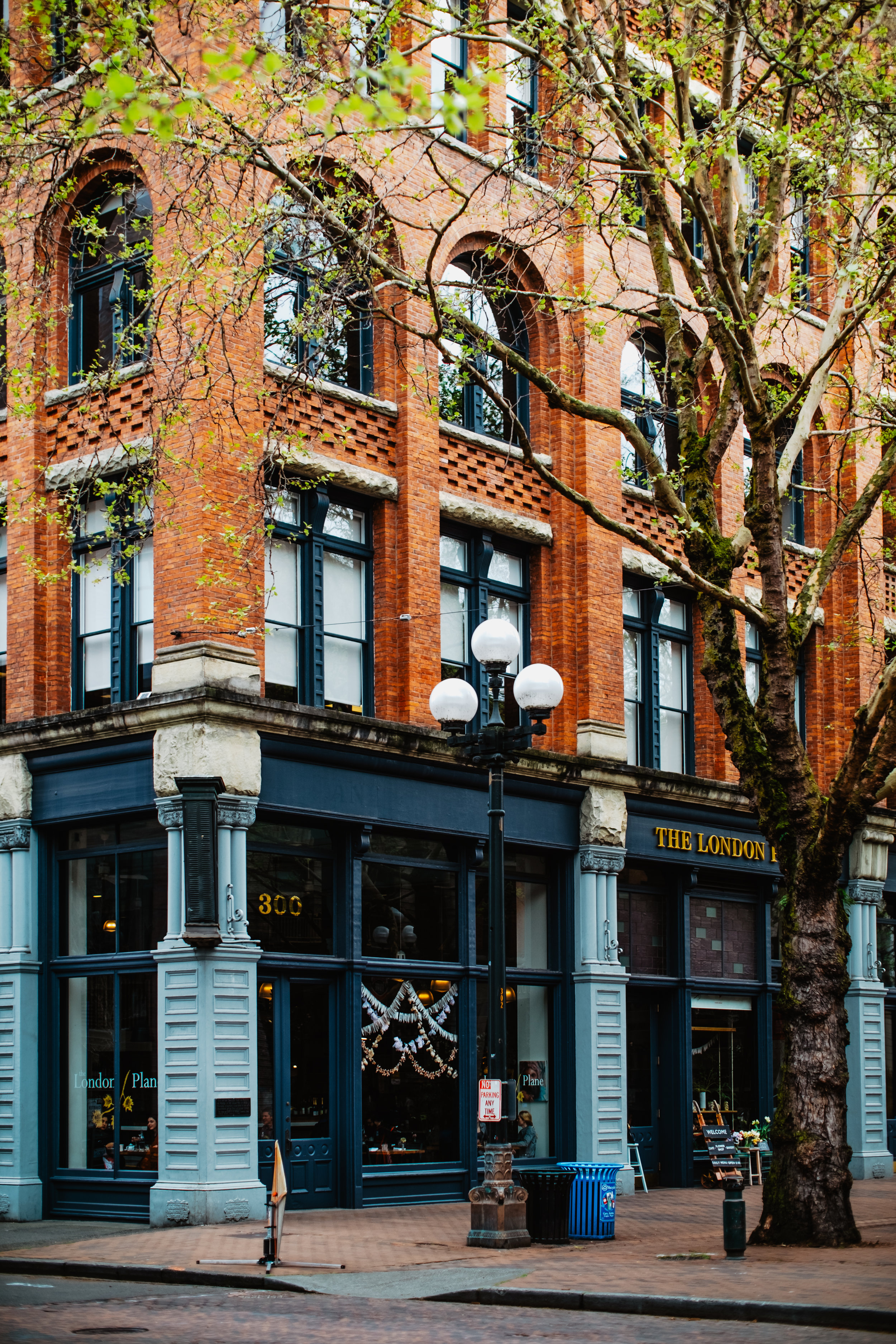 The London Plane- Pioneer Square Seattle Element Creative Lifestyle Photography2019-05-23 at 5.32.17 PM 3.jpg
