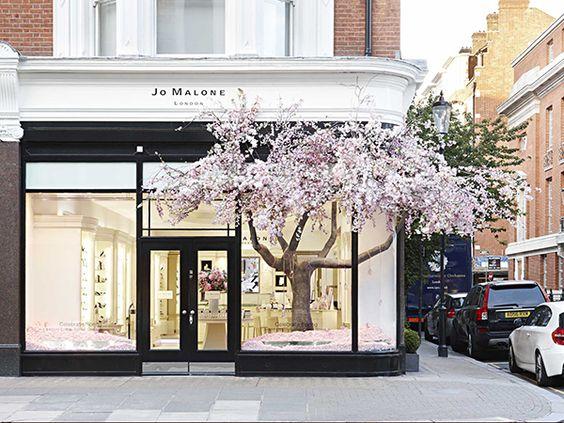 Jo Malone London Blossoms    via The Design Edit