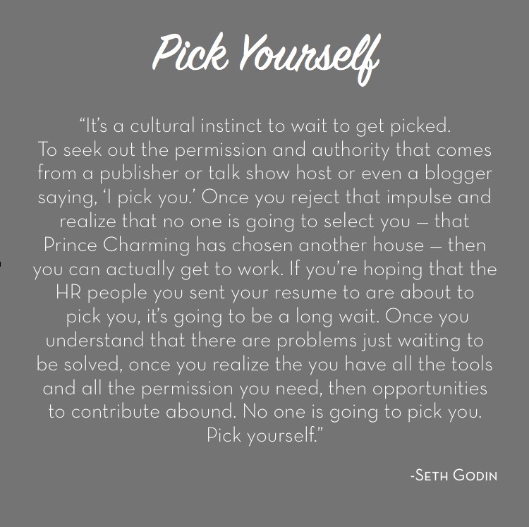 Seth Godin Pick Yourself