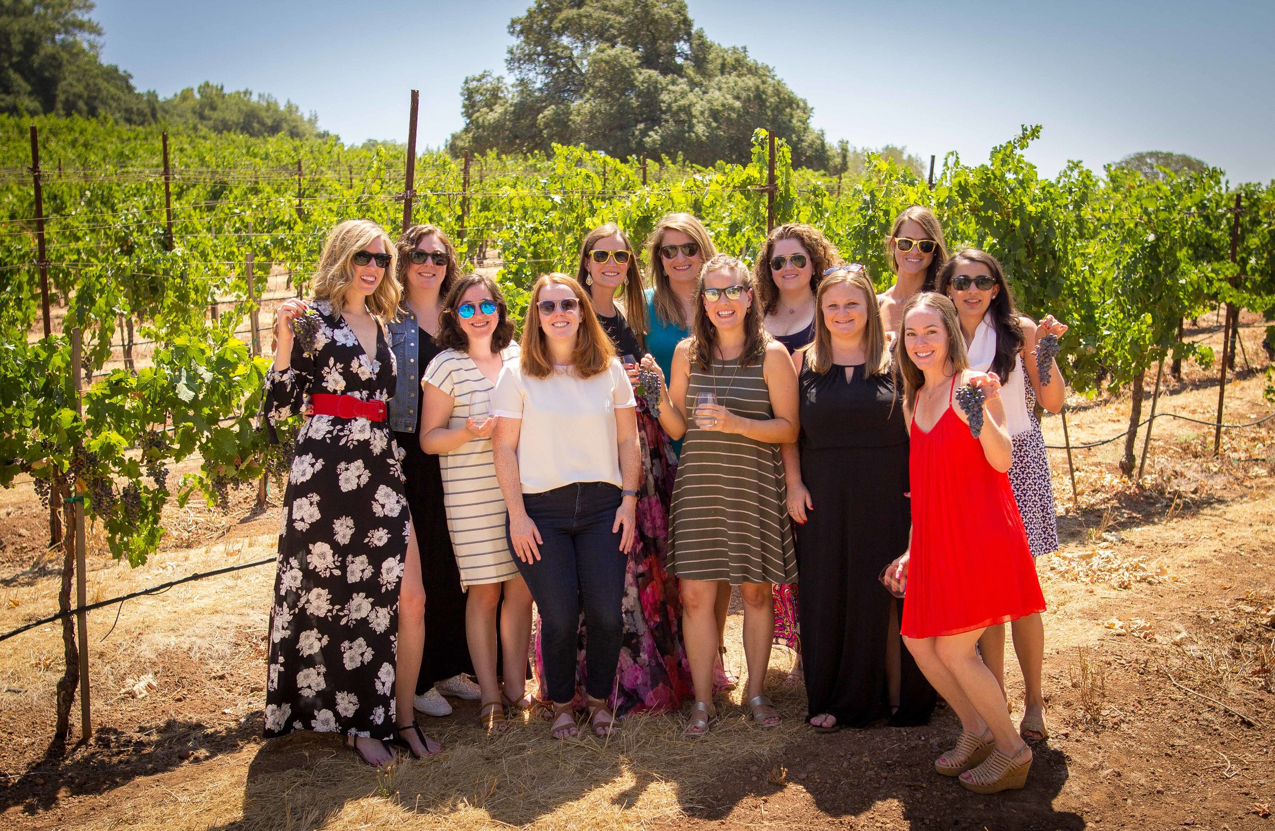 The whole group in the vineyard