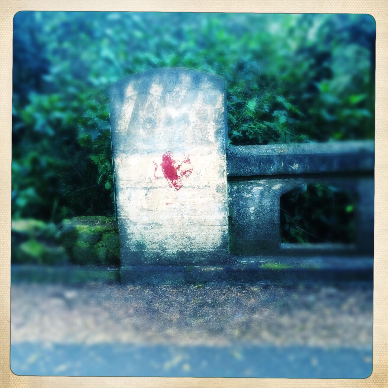 Angel Kiss   birthmark found on the road to Akiko's   Wailea, Hawaii   February 2015