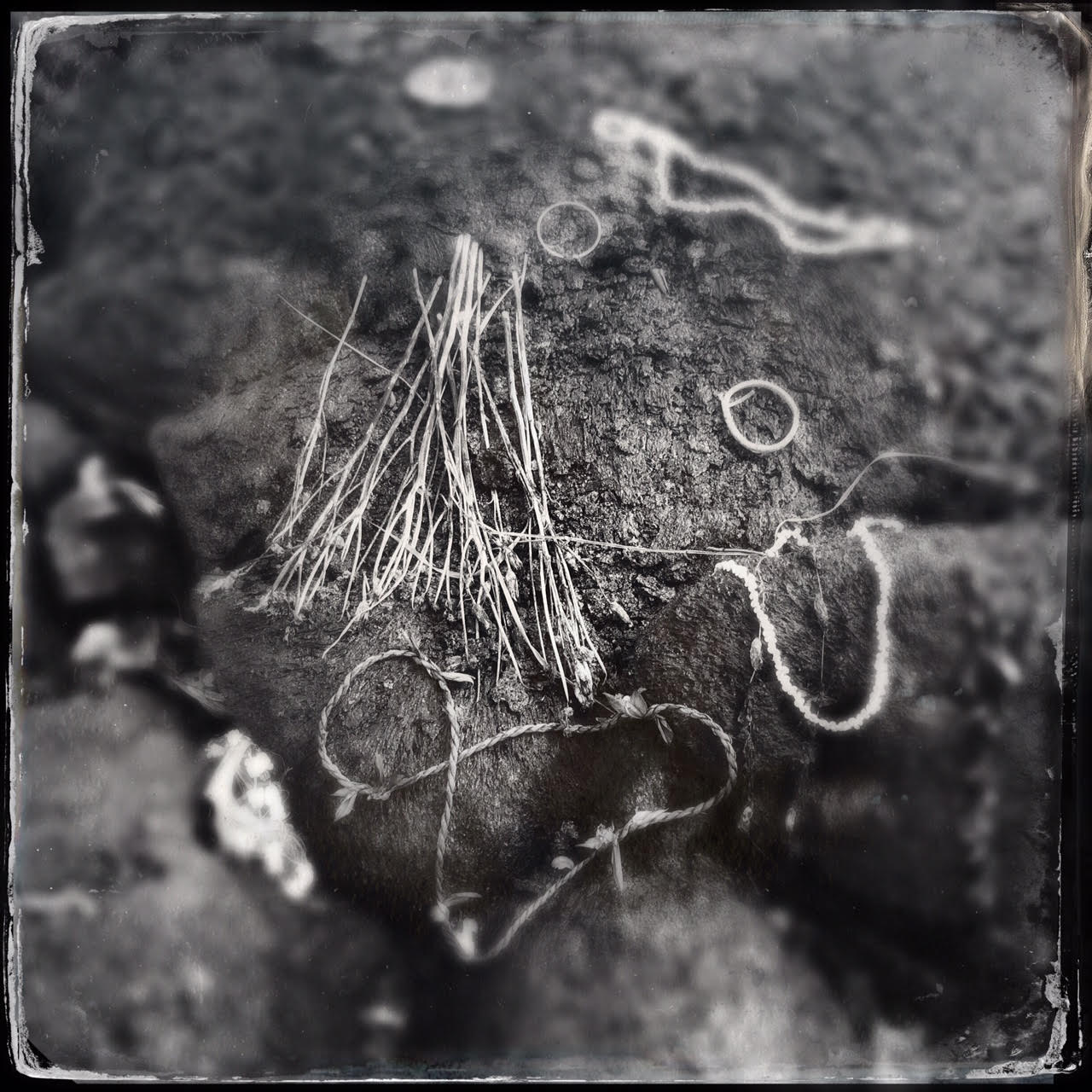 Constellation of Twists and Braids   offerings to Pele on the lava flow   Pahoa, Hawaii   February 2015
