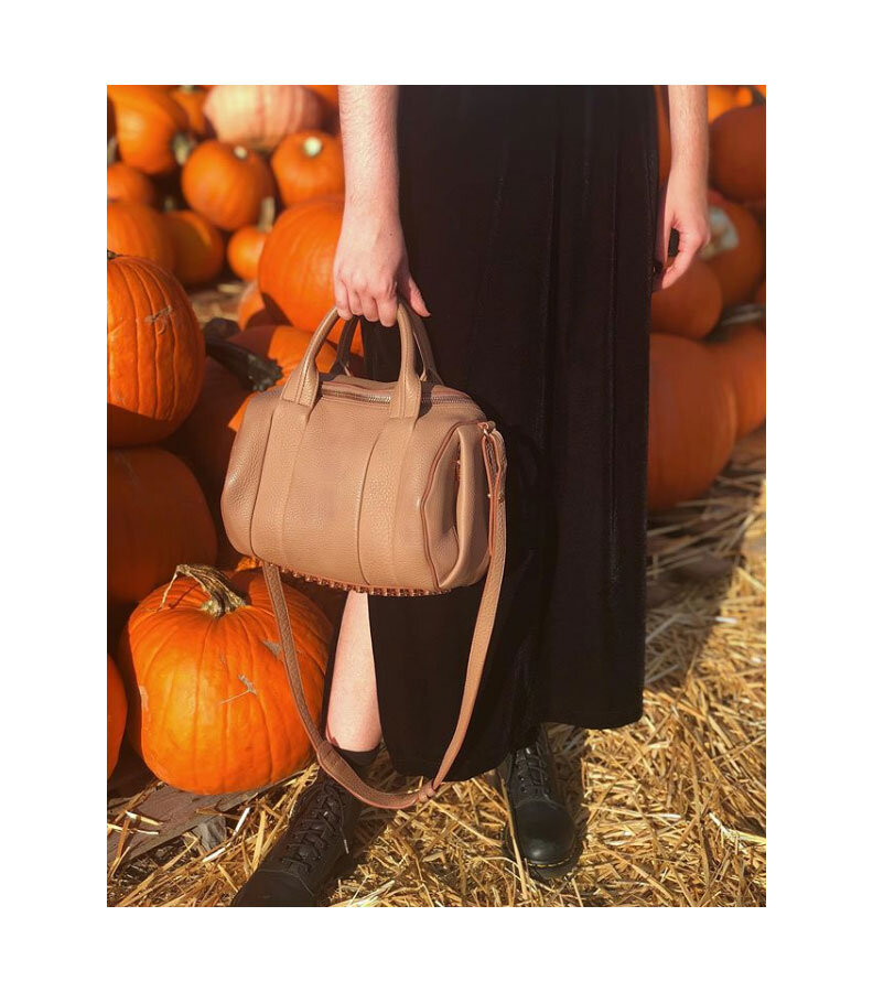 The search for the perfect pumpkin and bag.  Rocco bag with studded base,  Alexander Wang .
