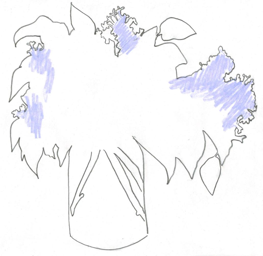 Lilac102052016.jpg