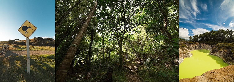 NewZealand-GroovyBanana-VanuatuPhotographers-Photography_0041.jpg