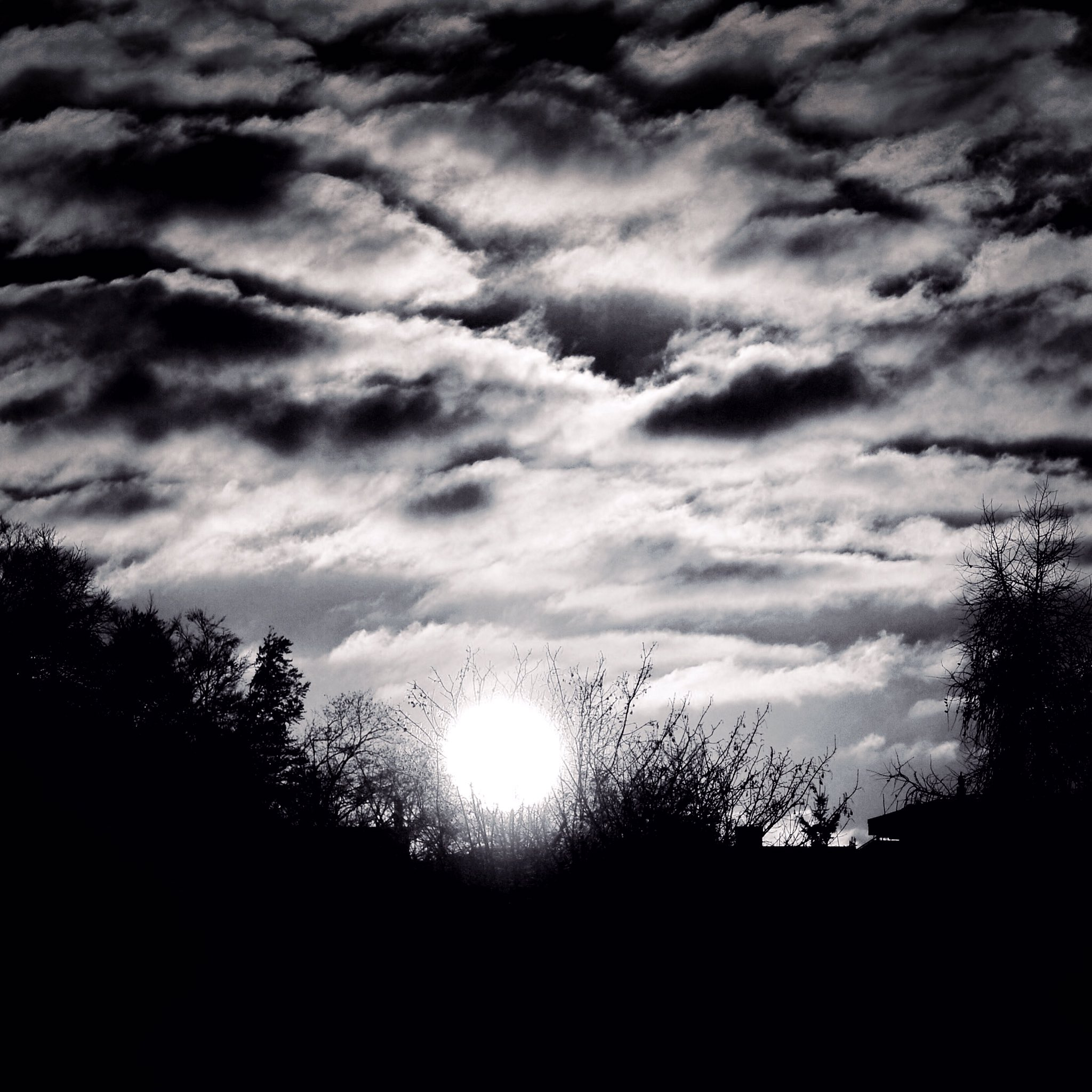 black_and_white_landscape_photography_1.jpg