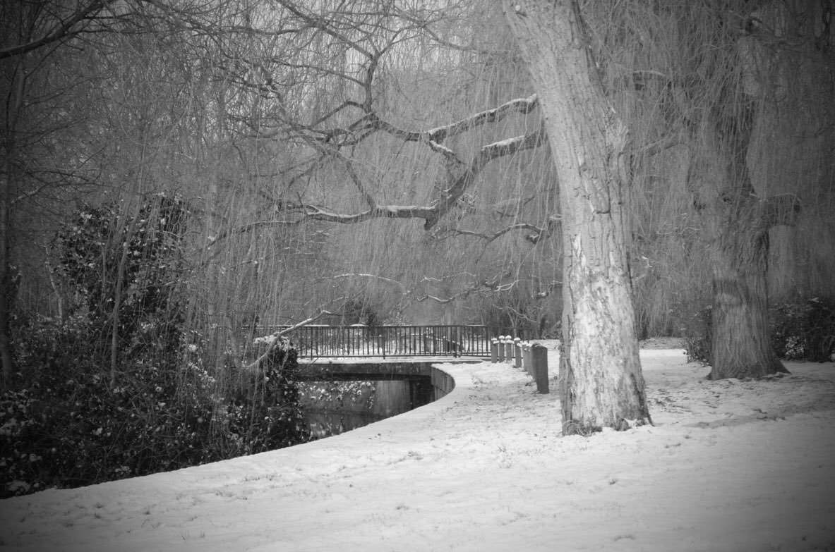 black_and_white_landscape_photography_5.jpg