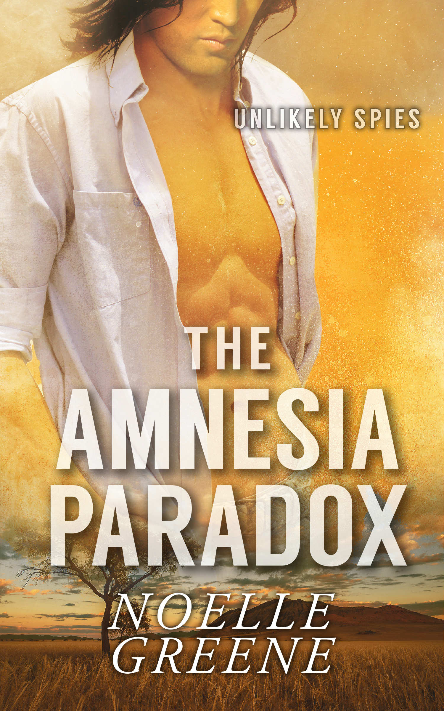 If you like steamy romantic thrillers, twists, turns, and second chances, you'll love The Amnesia Paradox.