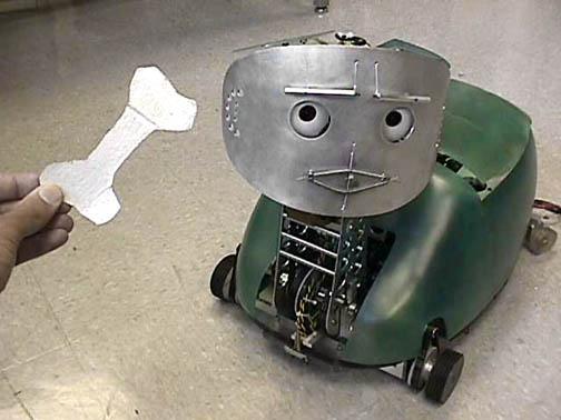 robot_and_bone_1.jpg