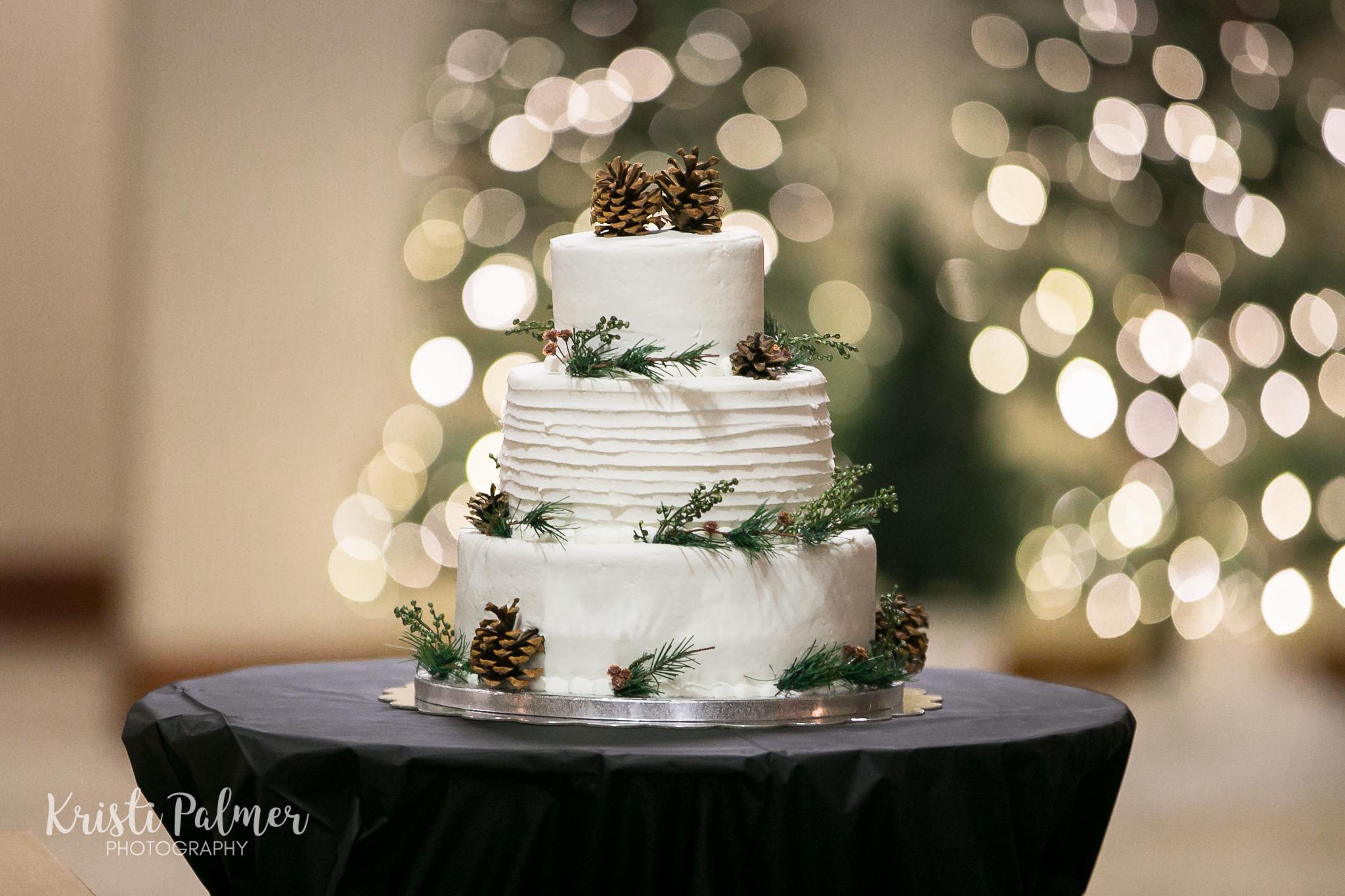 wedding photography wedding cake