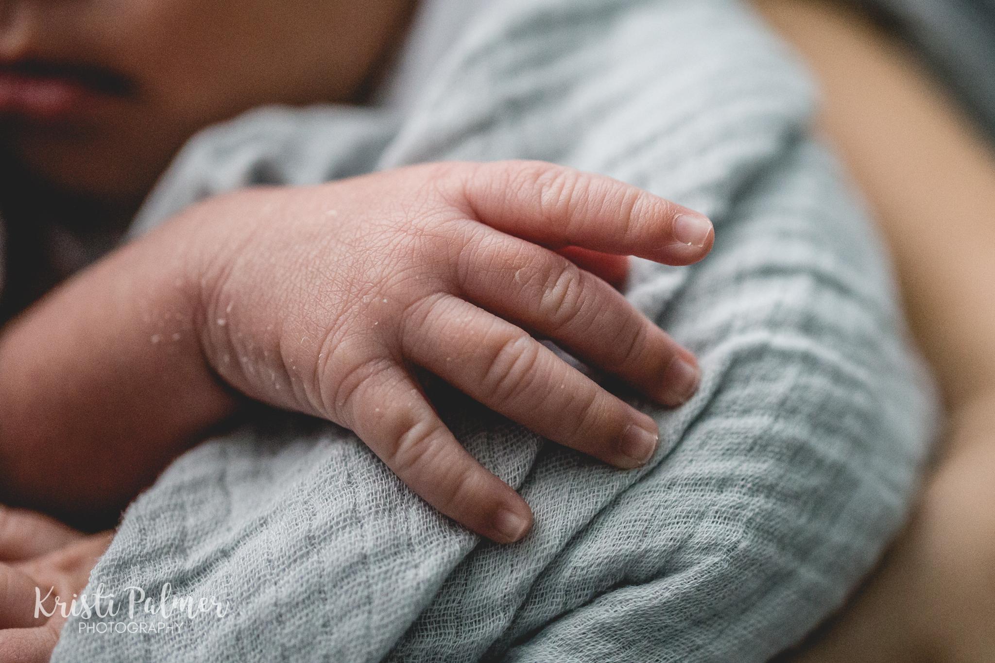 newborn detail hand photo