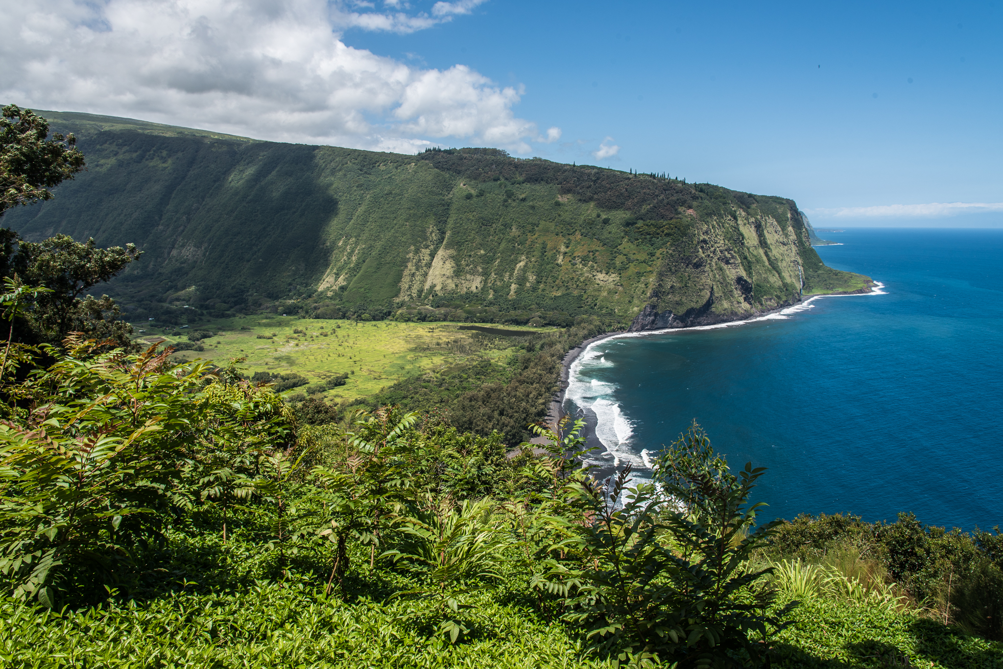 Waipio Valley as seen from the Lookout | Photo by  @mikecloom