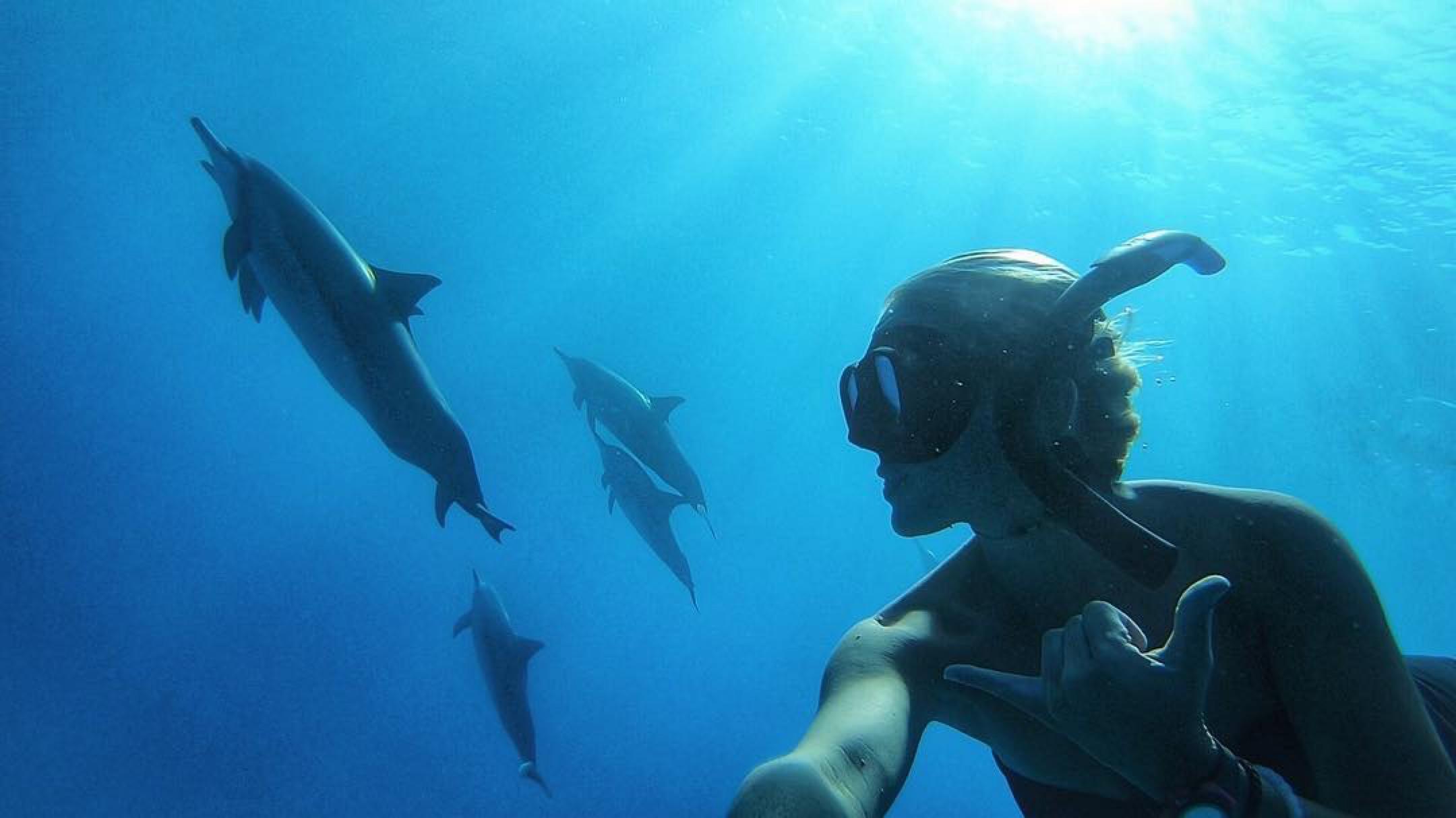 Dolphin Selfie in Kealakekua Bay by Danielle Smith