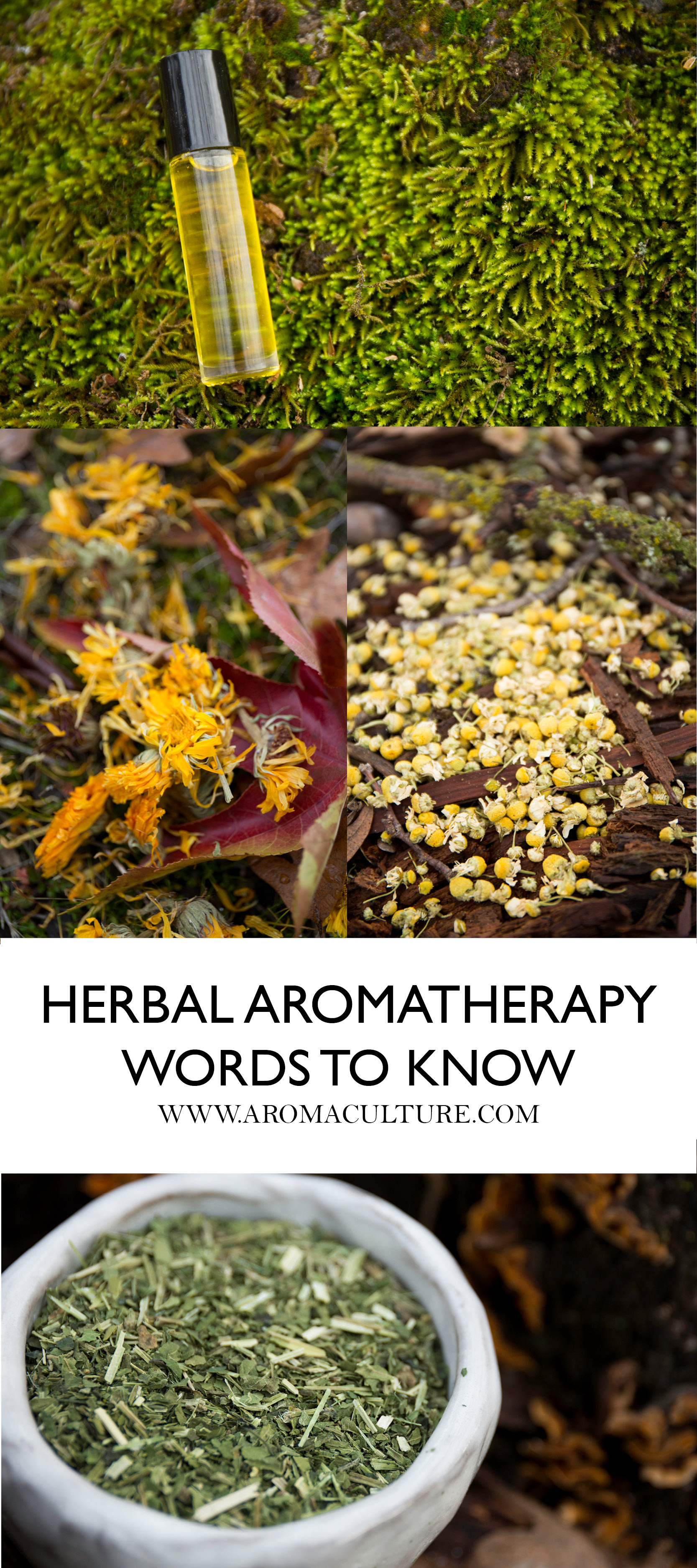 HERBAL AROMATHERAPY WORDS TO KNOW.jpg