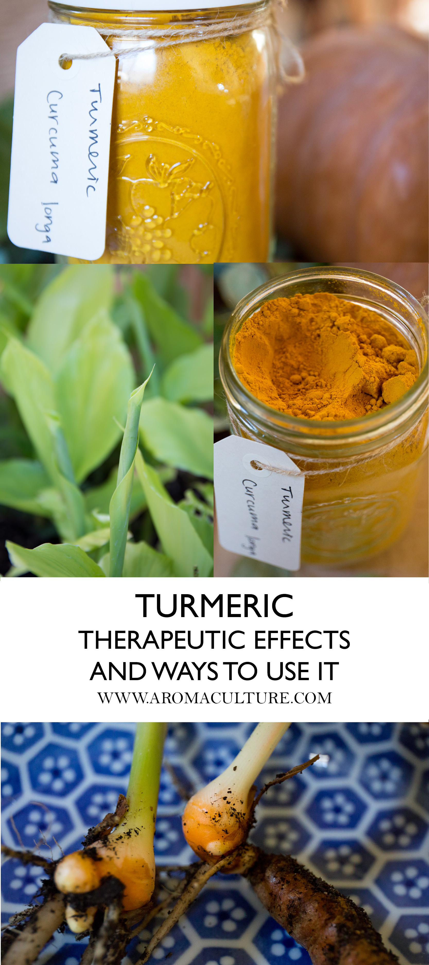 Turmeric by aromaculture.jpg