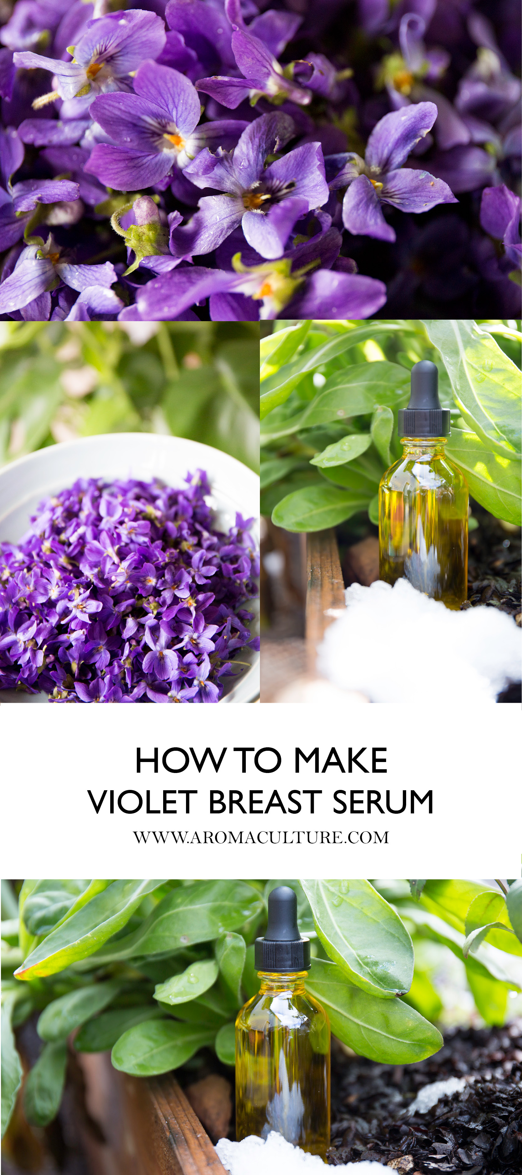 HOW TO MAKE VIOLET BREAST SERUM.jpg
