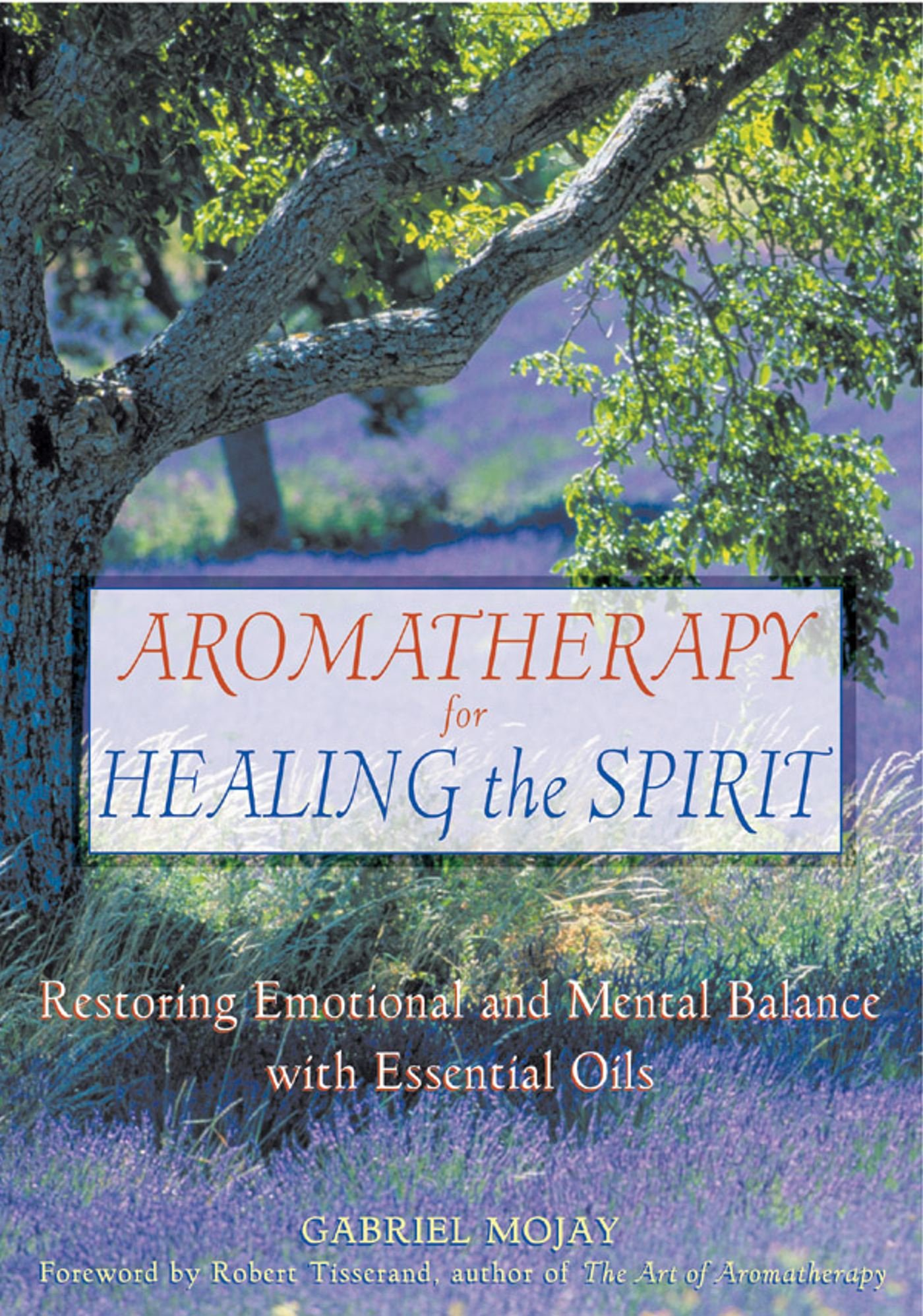 aromatherapy for healing the spirit.jpg
