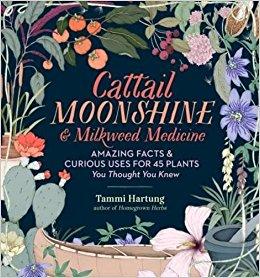cattail moonshine and milkweed medicine.jpg
