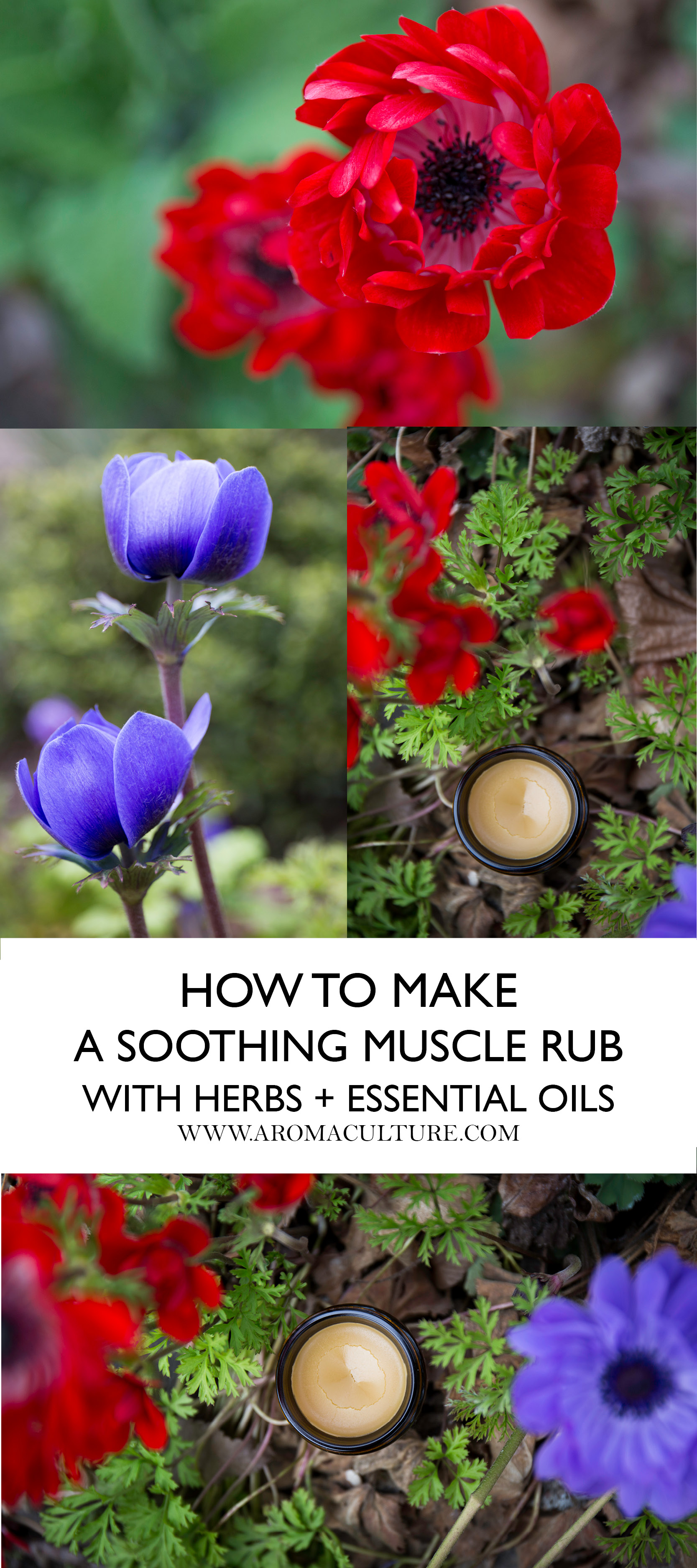 how to make a soothing muscle rub ointment for postworkout with herbs and essential oils aromaculture.jpg
