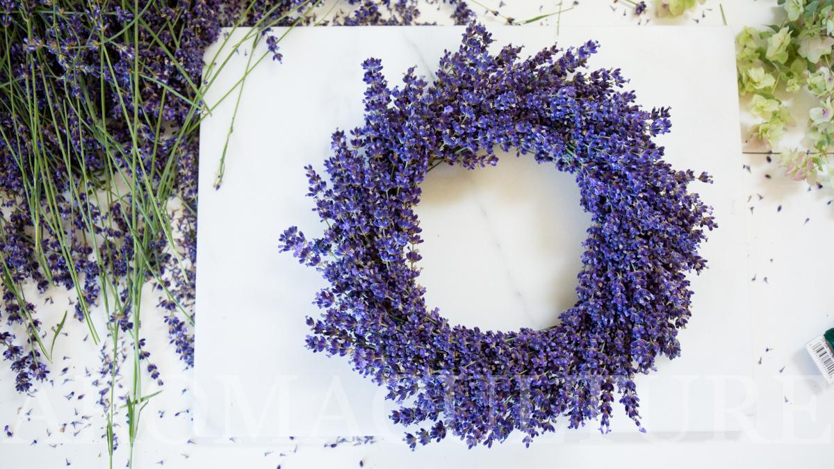 by erin stewart aromaculture.com-103.jpg