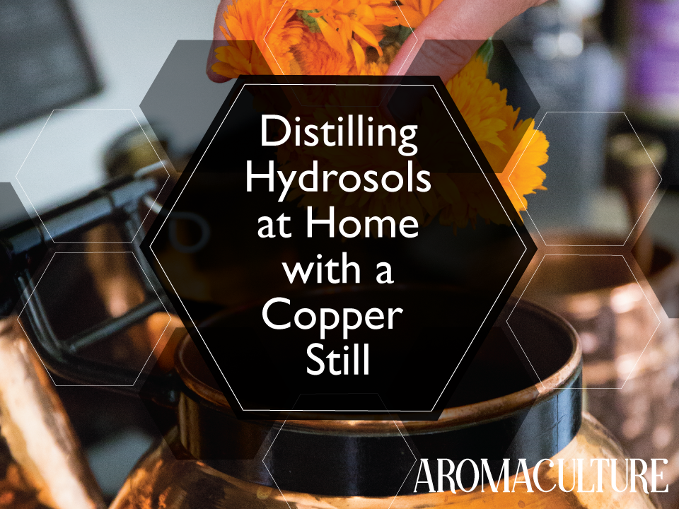 distilling-hydrosols-at-home-with-a-copper-still-by-aromaculture.png