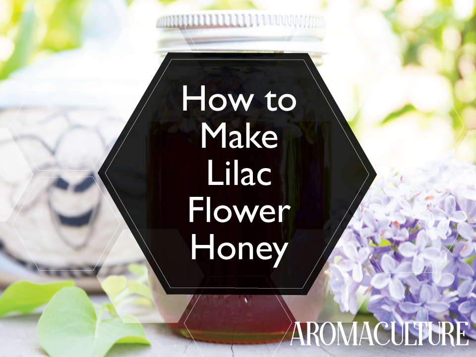 how-to-make-lilac-flower-honey.png